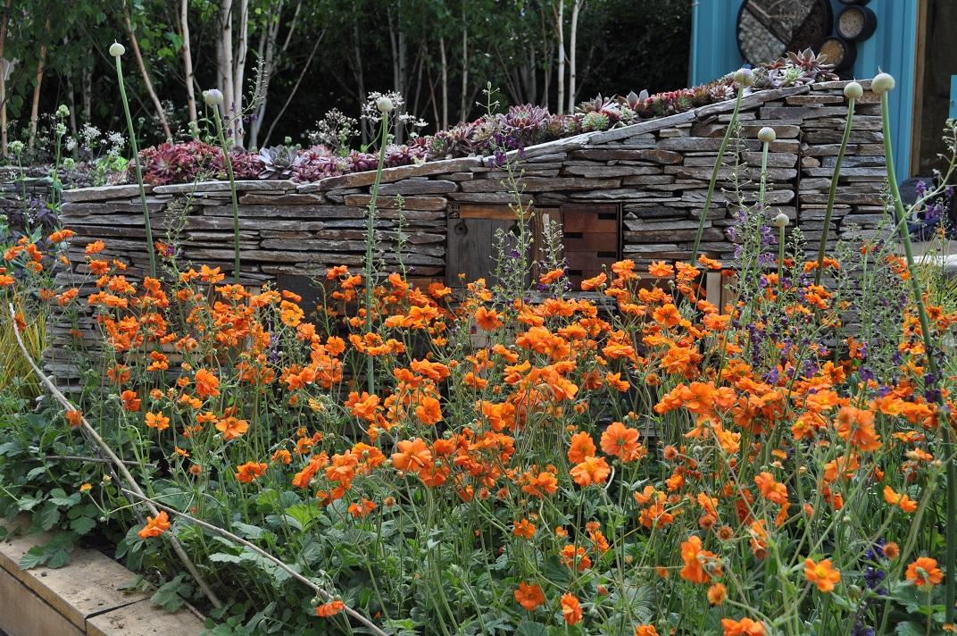 Award winning Garden Designers